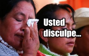 Usted disculpe